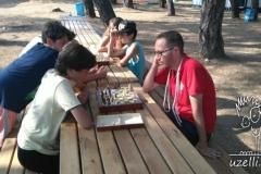 Chess-Satranc