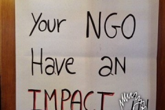 how-does-your-ngo-have-an-impact-in-the-world