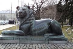 aslan-lion