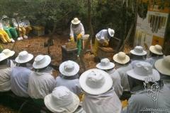 ari-kovanlarini-acarken-opening-the-beehives