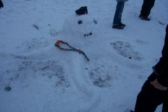 kardan-ahtapot-snow-octopus