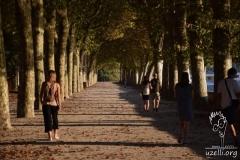 In the Park - Parkta